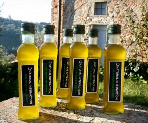 Mehr als nur lecker und gesund: Allrounder Olivenöl