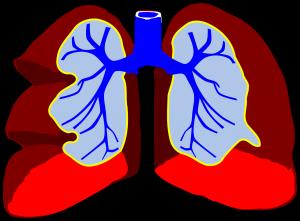 So beschleunigst du als frischgebackener Nicht-Raucher die Lungenreinigung